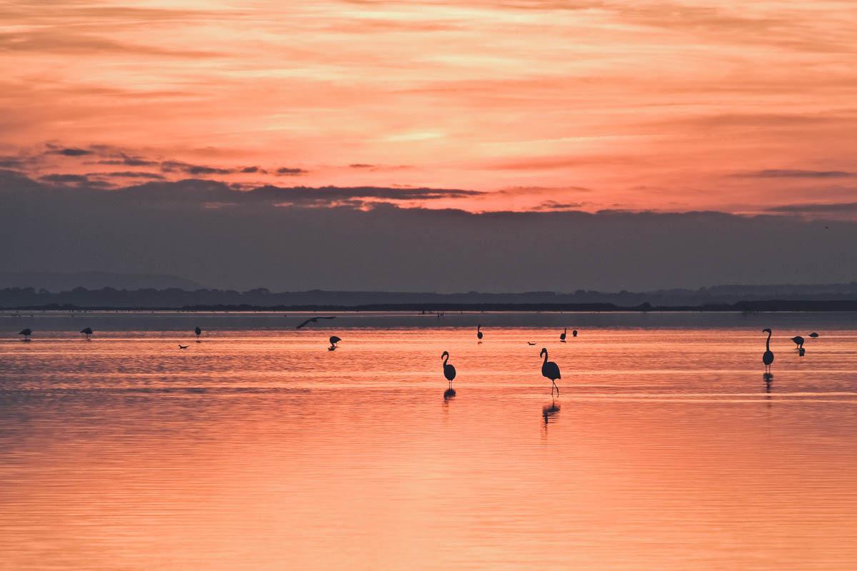 Sunset Villeneuve lès Maguelonnes