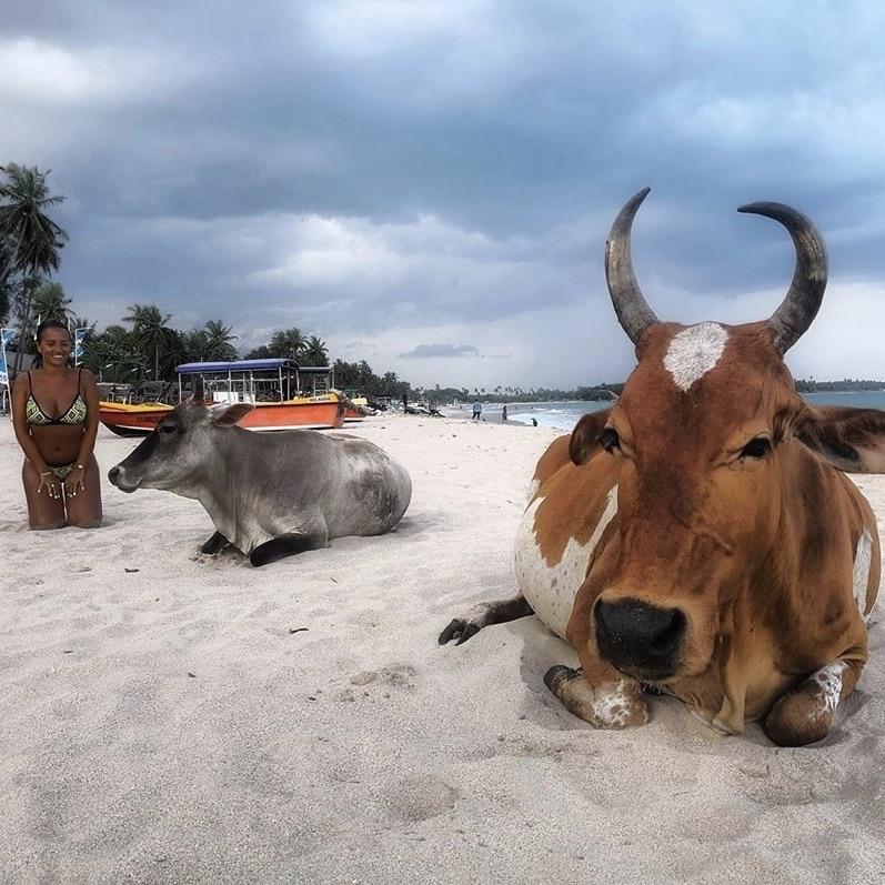bérénice-sri-lanka