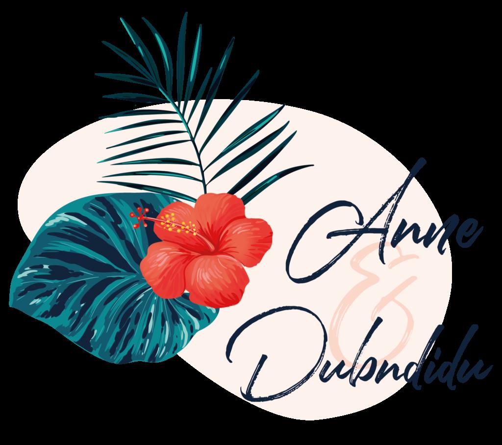 logo_annedubndidu